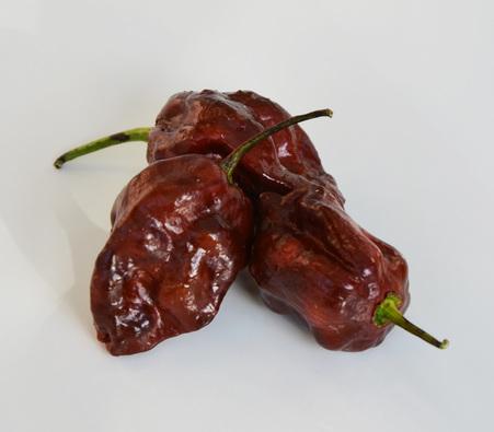Tinktur - Chilli Tinktura - Paprička Trinidad Moruga Scorpion FORTE 5x 18 ml. (Složení: lihový extrakt, chilli Trinidad Moruga Scorpion pálivost 2 000 000 SHU)