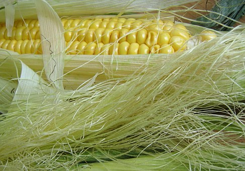 Tinktur - Tinktura Kukuřičné čnělky 10x po 37 ml. (Tinktura z čnělku kukuřice)