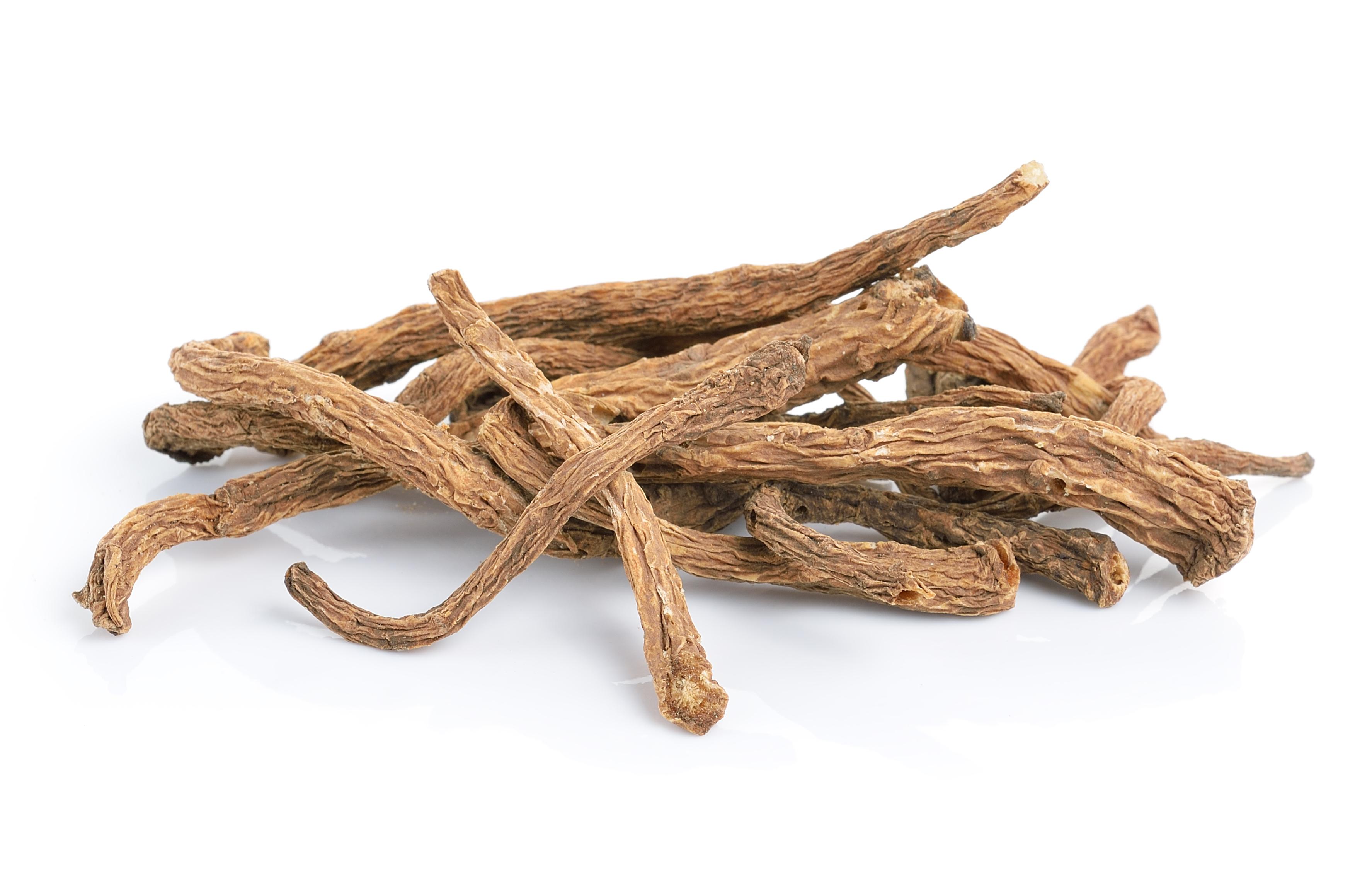 Tinktur - Tinktura Andělika kořen - FORTE 50 ml.