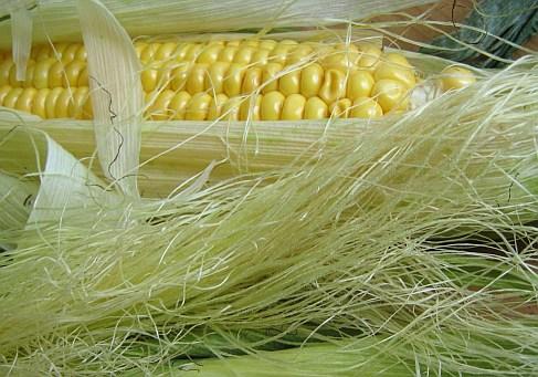 Tinktur - Tinktura Kukuřičné čnělky 37 ml. (Tinktura z čnělku kukuřice)